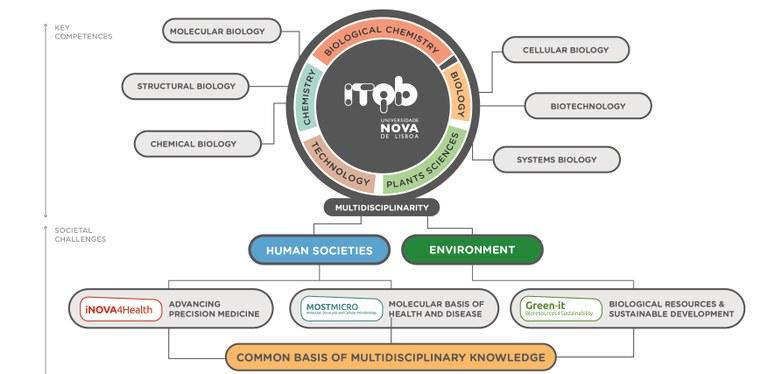 estrategia ITQB NOVA-04_crop.jpg
