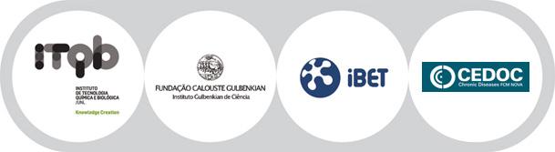 Logos Labs Associados