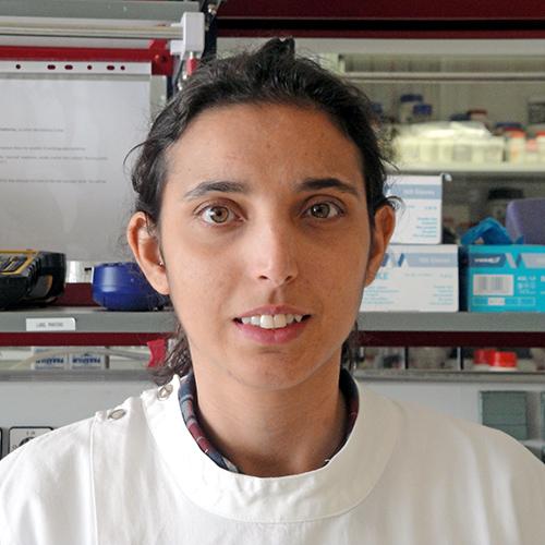 Ana Filipa Louro