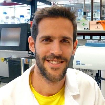 Miguel R. Guerreiro