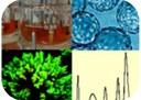 3rd Workshop European Network on Viral Vaccine Processes