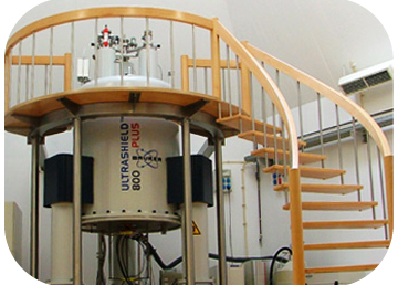 10 years ofthe highest field NMR spectrometer in Portugal