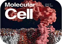 3D structure of anti-tuberculosis target makes cover of Molecular Cell