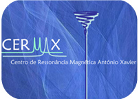 6th CERMAX Course on basic NMR