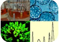 Animal Cell Technology Course