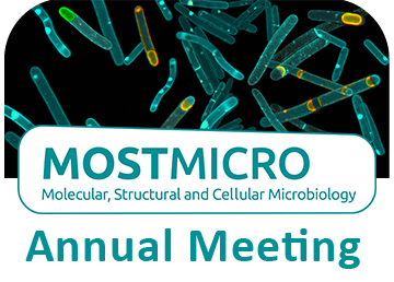 Annual meeting MOSTMICRO research unit