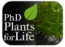 Applications open for the PhD Programme Plants for Life