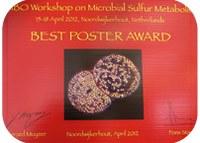 Best poster award at EMBO Workshop