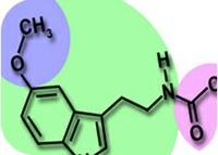 Biological molecules choose wisely
