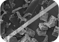 Biopolymers: unravelling the next generation materials