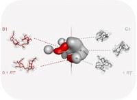Do tree-like molecules fold?