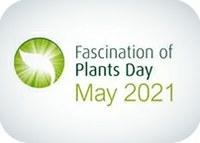 Fascination of Plants Day 2021 | Dia do Fascínio das Plantas