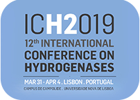 Hidrogenases research discussed in Lisbon