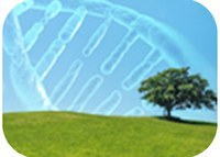 Master in Biotechnology for Sustainability