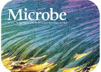 Microbe magazine higlights paper by ITQB researchers