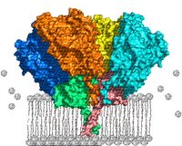 New Marie Curie Training Network on Membrane Proteins