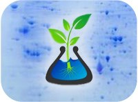 Plant Proteomics in Europe