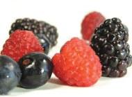 Promoting berries in Europe