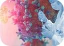 Research4Covid19: ITQB NOVA researchers fight COVID-19