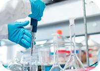 Universidade NOVA group establishes protocol with Pfizer