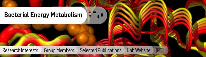 Bacterial Energy Metabolism.jpg