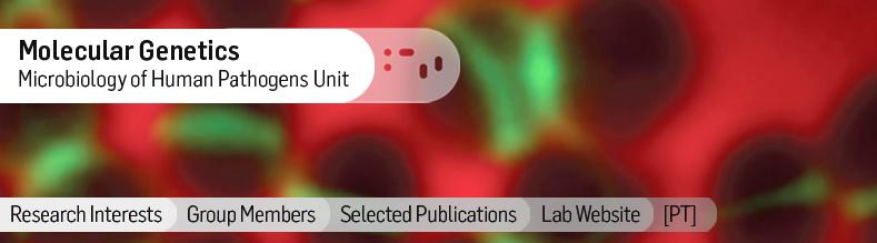 Molecular-Genetics.jpg