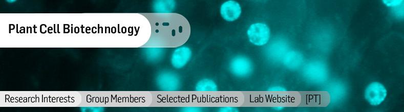 Plant-Cell-Biotechnology.jpg