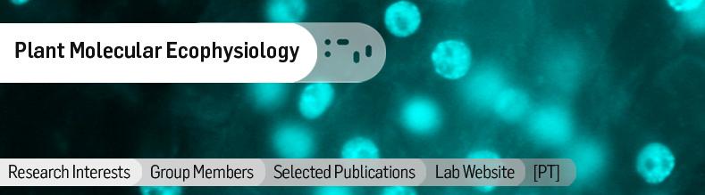 Plant-Molecular-Ecophysiology.jpg