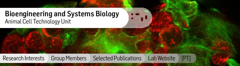 Bioengineering-and-Systems-Biology.jpg