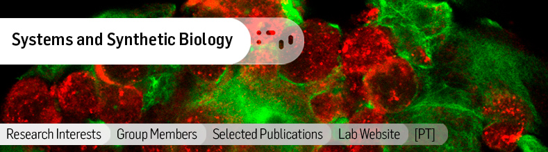 Biomolecular-Diagnostics.jpg
