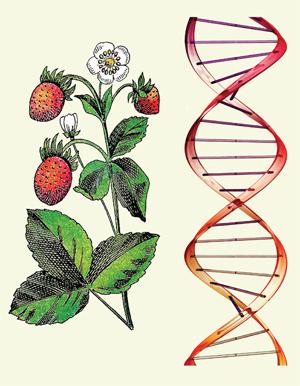 aprender-ADN_web.jpg