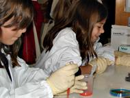 Microbiólogos por um dia