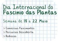 [Sociedade] Venha celebrar o fascínio das plantas