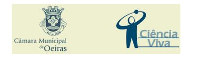 logo_insti